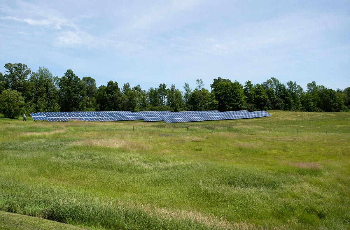 CSA in grassy field
