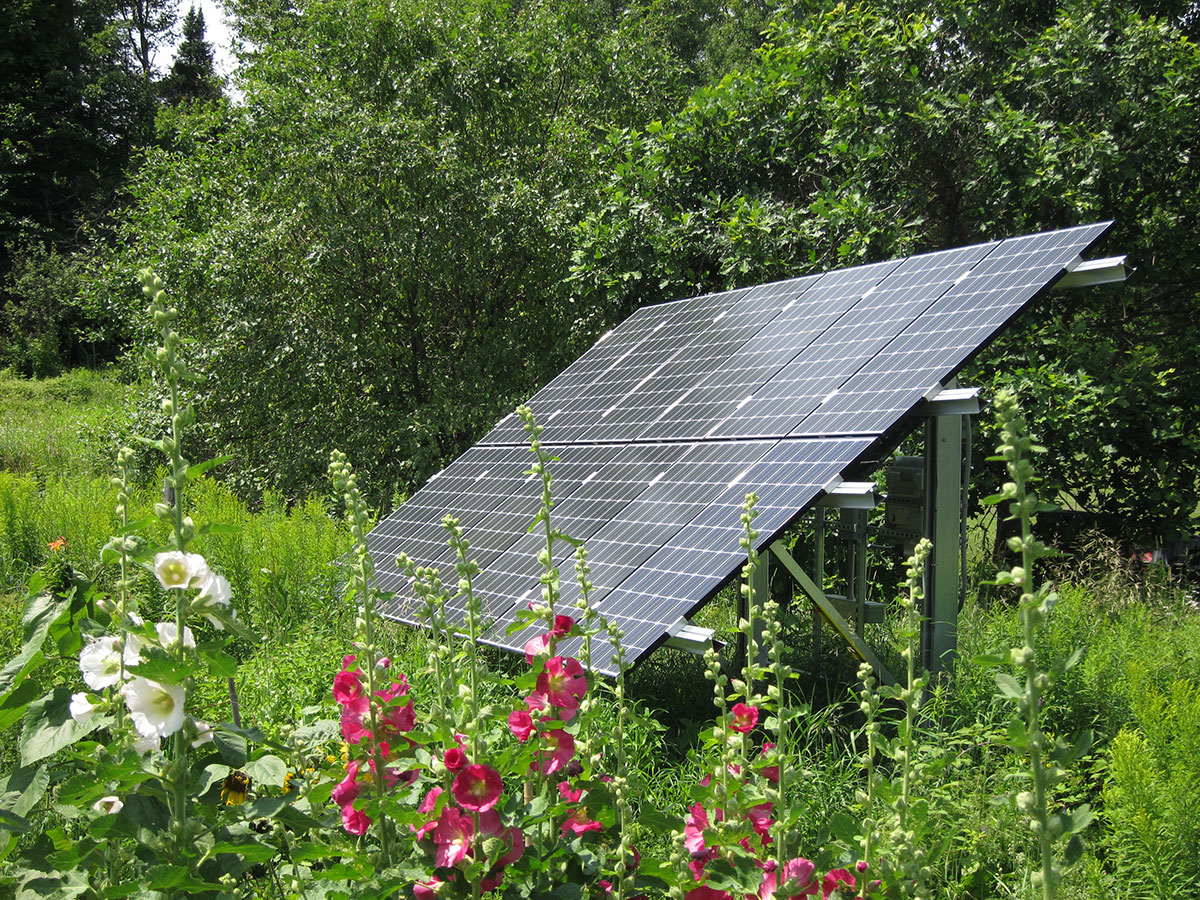 Ground mount solar in the woods