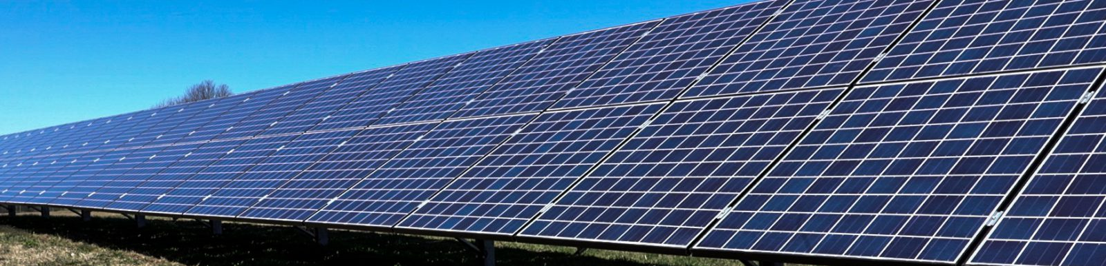 NY community solar array