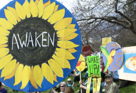 Taking Individual Action Against Climate Change