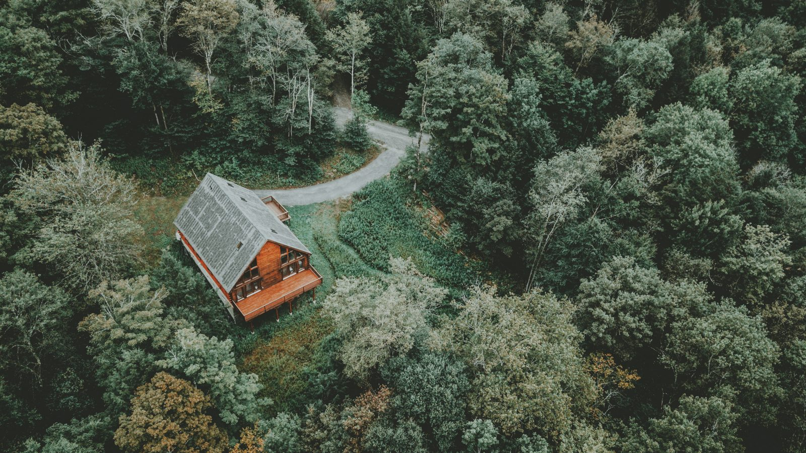 Live in a Forest? CSA is a great option if you can't go solar at home!