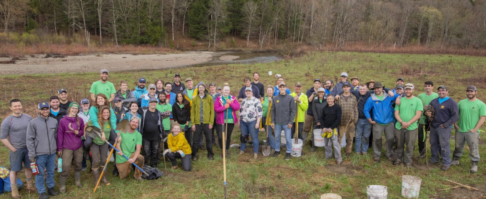 SunCommon Tree Planting