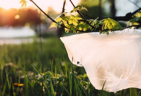 We Almost Replaced Plastic With Cotton, Here's Why We Didn't