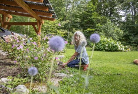 Going Solar in Underhill, Vermont — Nicole's Canopy